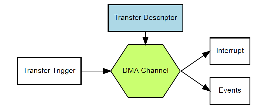 DMA-module-review.PNG