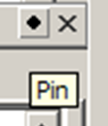 Pin%20Icon.png