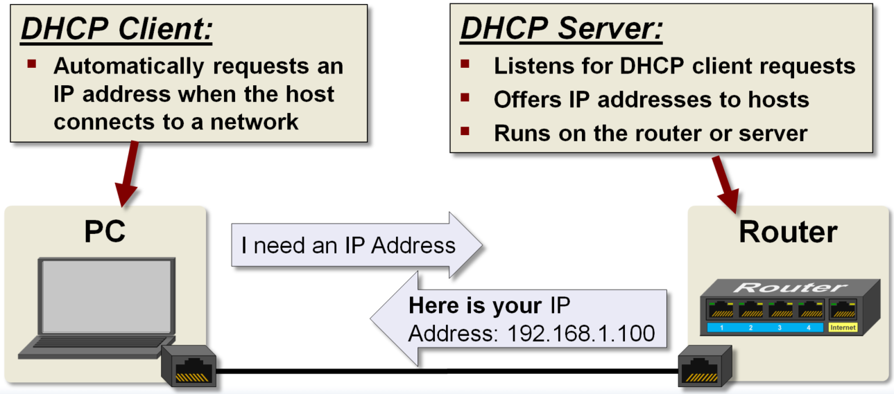 DHCP Client Server Example - Developer Help